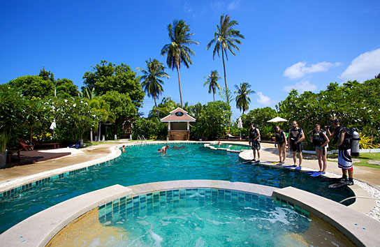 Ban 39 s diving resort koh tao official website - Koh tao dive center ...