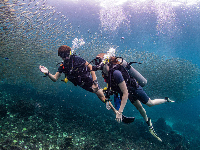 Discover Scuba Diving at Ban's Diving Koh Tao