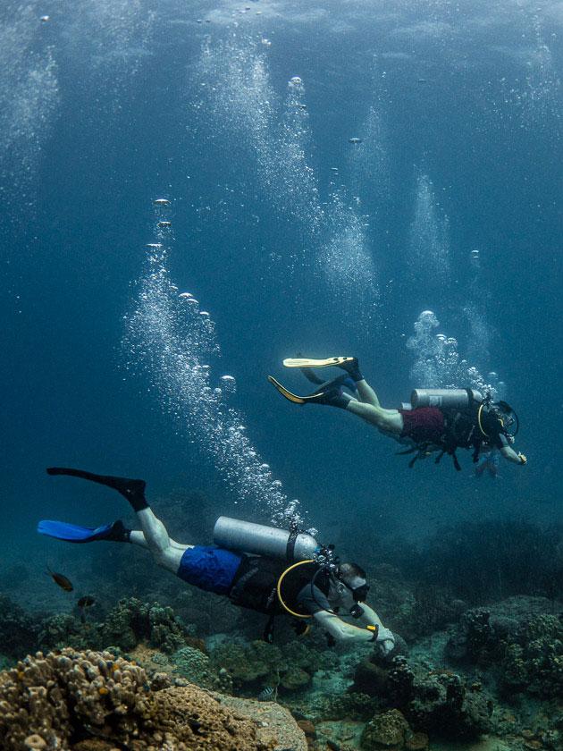 Ban's Diving Koh Tao