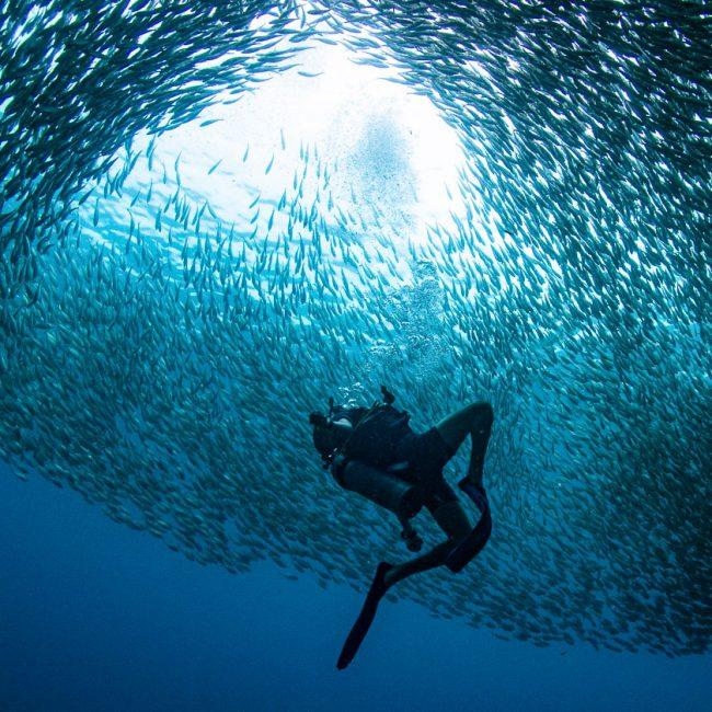 Ban's Diving Resort, Koh Tao